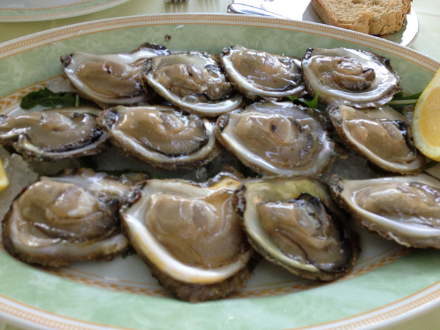 Festival of Oysters on Stradun